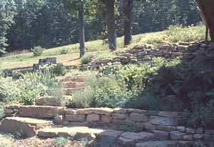 herb garden at Meadowcreek '86