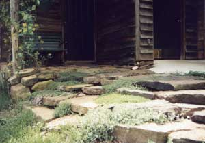 Rock steps with thyme